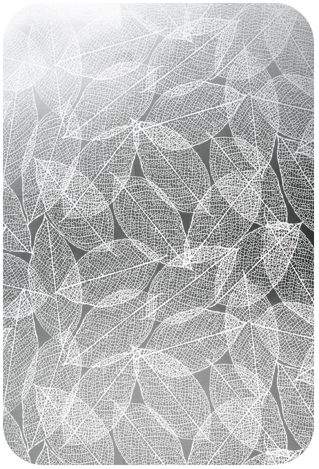 leaf-stainless-steel-sheet-etched.jpg